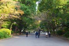 People enjoy at Ueno Park Stock Photo