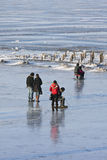 People enjoy a walk on the frozen Songhua river, Harbin, China. HARBIN-MARCH 7. City dwellers enjoy frozen Songhua River. Harbin is located Northeast China under Stock Photos