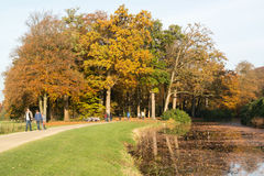 People enjoying autumn, Netherlands Royalty Free Stock Photos