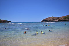 People enjoying beach activities and snorkling in Hanauma Bay, Hawaii. People enjoying beach activities, swimming and snorkling in Hanauma Bay, Hawaii Royalty Free Stock Image