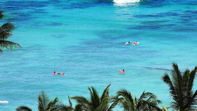 People Enjoying Beach at Tropical Resort Paradise. High view at the beach resort in Waikiki, Hawaii. Lots of people surfing, swimming and enjoying the water stock video footage
