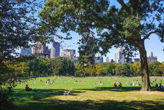 People enjoying a beautiful sunny day in Central Park Royalty Free Stock Photos