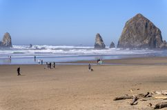 People enjoying a day at the beach Oregon royalty free stock photos