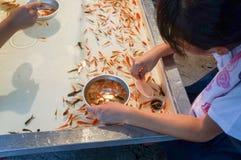 Tenjin Festival, Osaka, Japan. People enjoying the festival at Tenjin Festival, One of Japan`s top three festivals, Osaka, Japan, July 23rd, 2018. fish scoop stock images
