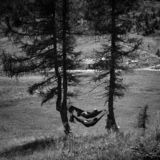 People enjoying nature in hammocks stock images