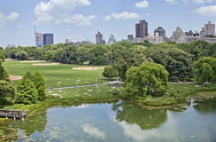 People enjoying the summer at Central park. People enjoying the summer at the turtle pond in Central Park, NYC Stock Image