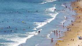 People Enjoying Sunny Day at the Beach stock footage