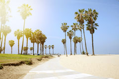 People enjoying a sunny day on the beach of Venice, California Royalty Free Stock Image