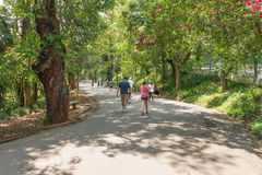 People enjoying their leisure to walk at the Aclimacao Park Royalty Free Stock Image
