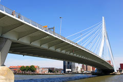 People upon Erasmusbridge in dutch city of Rotterdam Stock Image