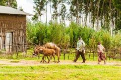 People in Ethiopia Stock Photo