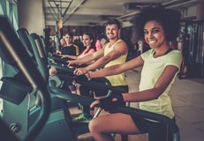 People exercising on a cardio training machines Stock Photography