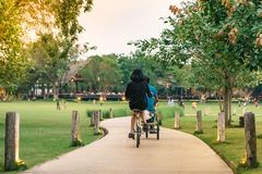 People exercising by cycling in the evening stock image