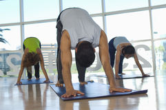 People Exercising On Mat Stock Photography