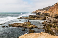 People Explore Tide Pools in Point Loma, California royalty free stock image