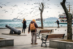 People feeding birds near Bosphorus in Istanbul, Turkey Royalty Free Stock Photo