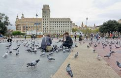 People feeding the pigeons in Catalonia Plaza, Barcelona Royalty Free Stock Images