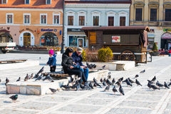 People feeding the pigeons at Council Square in Royalty Free Stock Images