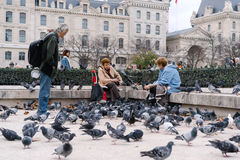 People feeding the pigeons in front of Notre-Dame Square, Paris, France Royalty Free Stock Photo