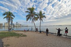 People fishing with the Miami skyline in the background. stock photo