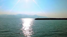 People Fishing near the Sea. Video stock video