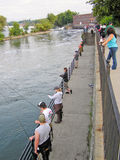 People Fishing for Salmon in the Oswego River. A picture of people lining up to try and catch some trophy pacific strain chinook, or king salmon, from the river Royalty Free Stock Photos