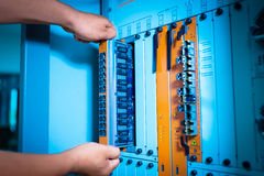 People fix core switch in network room Stock Images