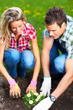 People florists. Young smiling people florists working in the garden Royalty Free Stock Images