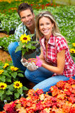People florists Stock Photos