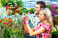 People florists Royalty Free Stock Image