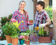 People florists in the garden Royalty Free Stock Photos