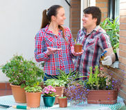 People florists in the garden Stock Image