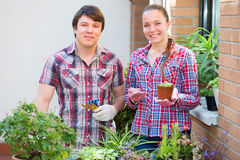 People florists in the garden Stock Images