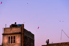 People flying kites from houses in Jaipur Royalty Free Stock Photography