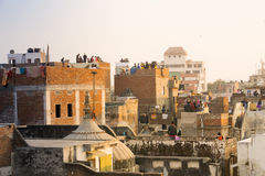 People flying kites from their rooftops in old delhi jaipur city Royalty Free Stock Photo