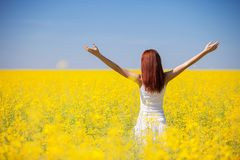 People freedom success concept. Happy woman in the field with flowers at sunny day in the countryside. Nature beauty background,. Blue sky and yellow flowers royalty free stock photos