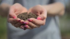 People, gardening, charity, ecology and environment concept - close up of woman cupped hands holding soil. With sprout stock footage
