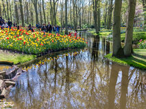 People in gardens of Keukenhof, Holland Stock Photos