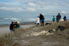 People gather on beach to view aftermath of Rena d Stock Photo
