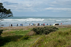 People gather on dunes to view aftermath of Rena d Royalty Free Stock Photography