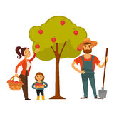 People gather fruit harvest vector farm agriculture Stock Images