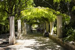 People get rest and enjoy shadows of trees. At Hort del Rei park next to Royal Palace of La Almudaina and Catedral de Mallorca stock images