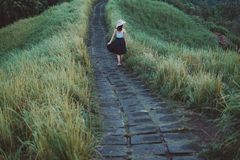 People, Girl, Walking, Path, Green Stock Images