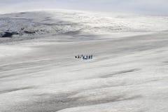 People on glacier stock photo