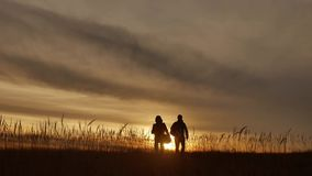 People go group travel of tourists field nature of a sunset silhouette two people travel. tourists nature lifestyle. People go group travel of tourists field stock footage