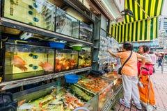 People goldfish market Mong Kok Kowloon Hong Kong Royalty Free Stock Image