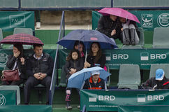People in a grand stand with umbrellas Royalty Free Stock Photo