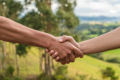 People greeting by shaking hands in the nature, handshake sunset royalty free stock photo