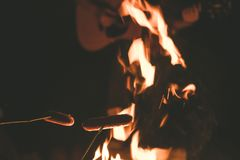 People grilled sausages and playing guitar with campfire in dark night. People grilled sausages and playing guitar with campfire in the dark night Stock Photography