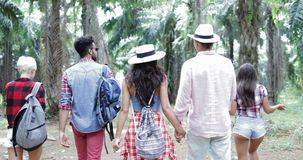 People Group With Backpacks Trekking On Forest Path, Young Men And Woman On Hike In Tropical Palm Tree Park Tourists. Slow Motion 60 stock footage